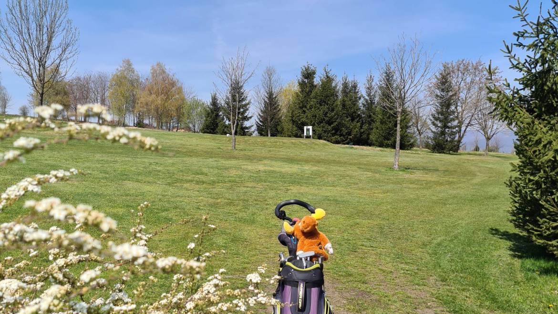 Flori(i)le la Golf Club Paul Tomita I Guest Post Mariana Gorczyca